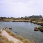 Motyé et l'île San Pantaleo