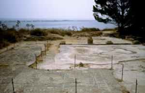motya-casa-dei-mosaici
