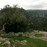 Monts Hybléens, Palazzolo-Acréide