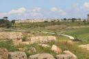 Ruines de Sélinonte