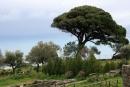 Tyndaris, capo e parco archaeologico