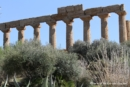 agrigento-tempio-di-giunone-152