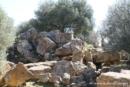 agrigento-tempio-di-zeus-036